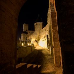 Medieval Castle by night (2)